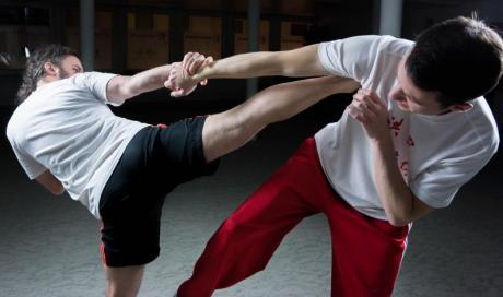 Différents styles Kung Fu Lyon