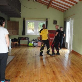 Cours Kung Fu Lyon 1