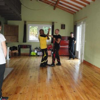 Cours Kung Fu Lyon 2