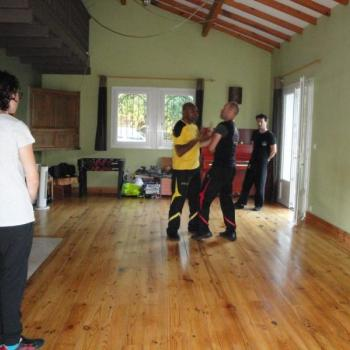Cours Kung Fu Lyon 3