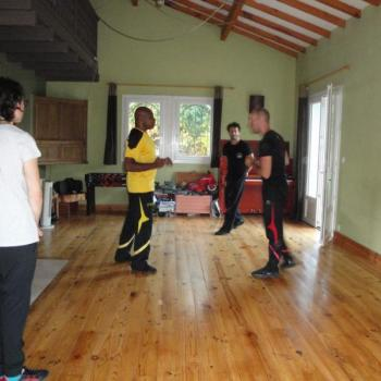 Cours Kung Fu Lyon 5
