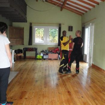 Cours Kung Fu Lyon 6