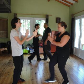 Cours Kung Fu Lyon 7