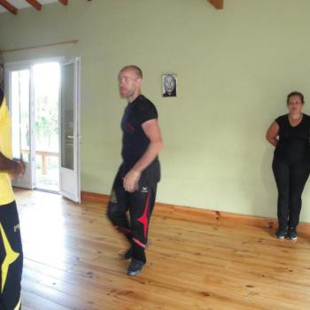 Cours Kung Fu Lyon 8