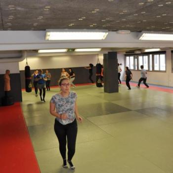 arts martiaux lyon www.pwts.fr